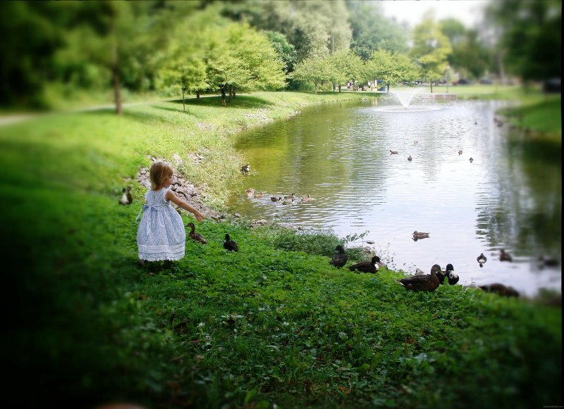 Girl and Duckies in Saratoga Springs 2013 by Heavenly Ryan