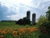 New Haven Barn Silos 2013 by Heavenly Ryan